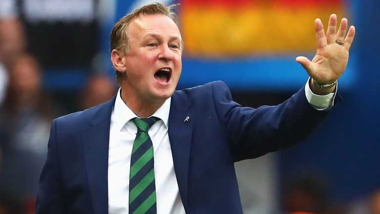 No approach from Norwich City for Michael O'Neill: Northern Irish FA
