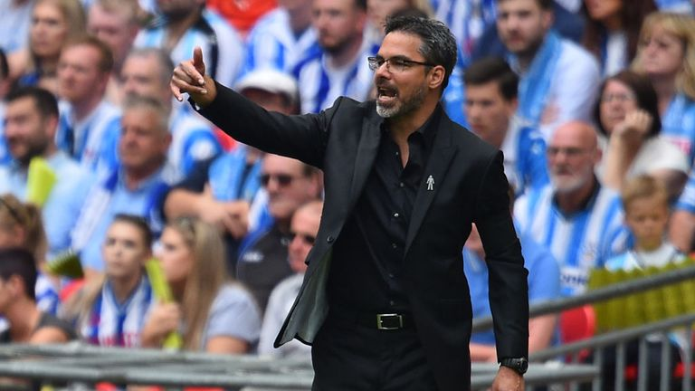 Huddersfield Town's German head coach David Wagner gestures on the touchline