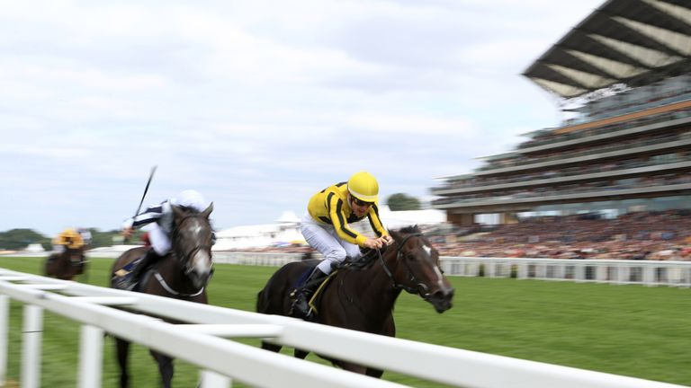 Alpha Centauri finishes second at Royal Ascot