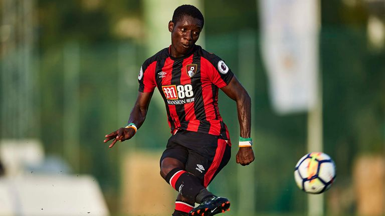 Sunderland's bid for Bournemouth's Max Gradel rejected as Toulouse plan follow-up offer