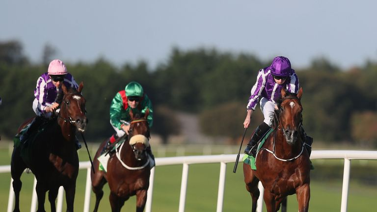 Saxon Warrior is fancied for the Racing Post Trophy