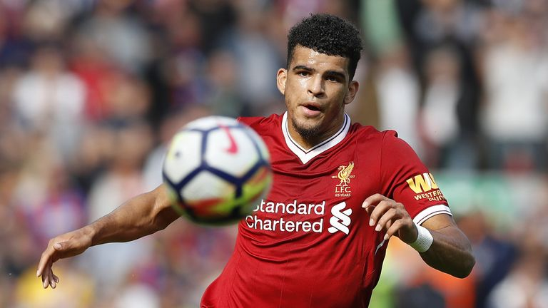 Dominic Solanke featured for Liverpool's first-team last year