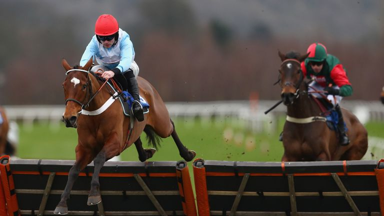 Verdana Blue is a massive outsider for Nicky Henderson