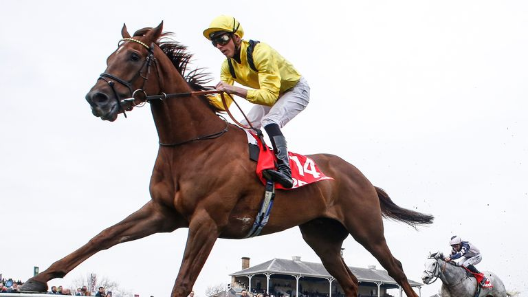 Addeybb - out to prove himself on faster ground in Lockinge