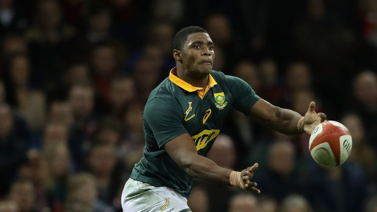 Springboks suffer back-row blow for Rugby Championship