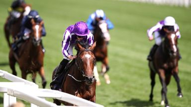 Kew Gardens - will run in the Sky Bet Great Voltigeur Stakes