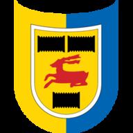 Cambuur Leeuwar badge