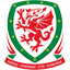 Wales Club Badge
