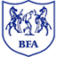 Botswana Club Badge