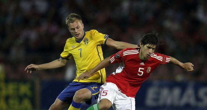 Sebastian Larsson: Sweden midfielder bagged a brace in friendly win