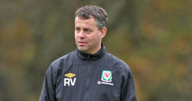 Raymond Verheijen: keen to lead Wales in World Cup qualifiers