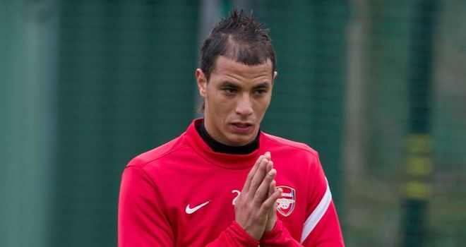 Marouane Chamakh: Has signed for West Ham until the end of the season