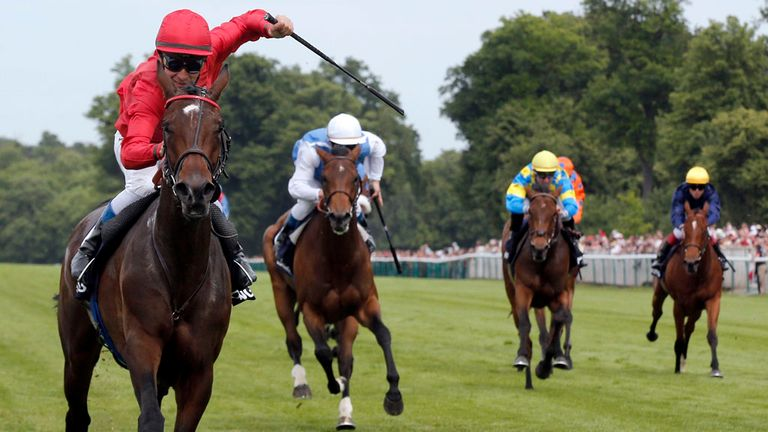 Treve: Has the Arc as her principal target