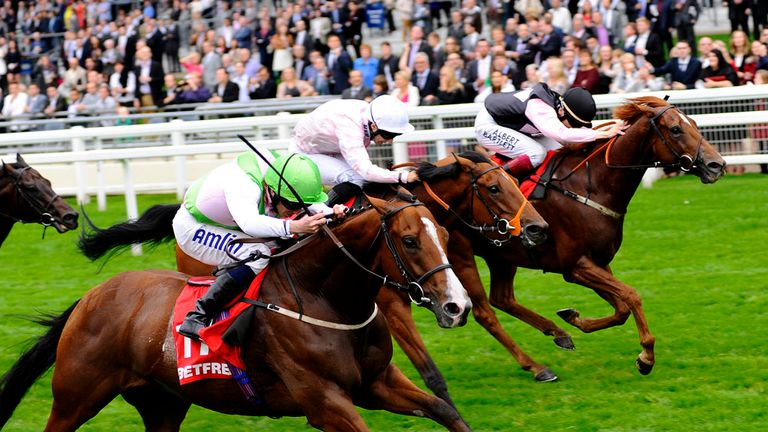 Heaven's Guest: Can strike at Newcastle on Wednesday