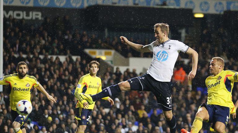 Harry Kane: The striker has expressed himself under Tim Sherwood