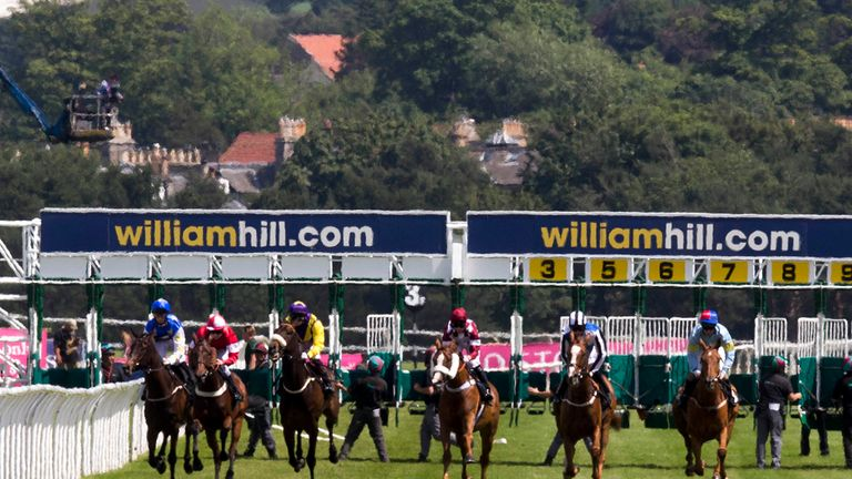 Go Dan Go slams rivals at Musselburgh   Racing News   Sky Sports