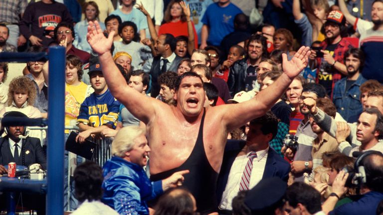 Andre the Giant was a sole survivor at the maiden Survivor Series