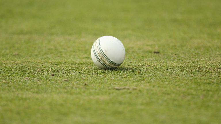 Over the past 25 years the number of grass cricket wickets in London has fallen by 41 percent
