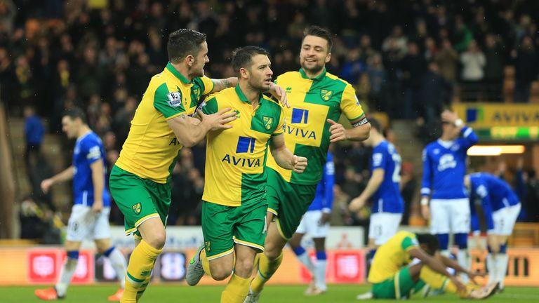 Wes Hoolahan is set to make a return for Norwich at Carrow Road