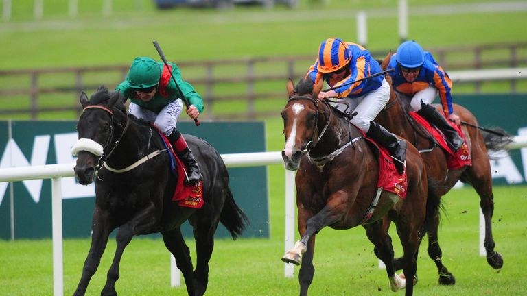 Harzand returned lame from the Irish Champion Stakes