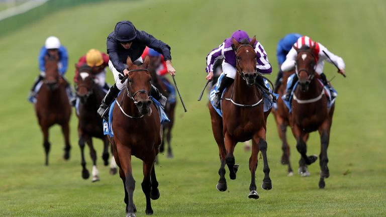 Rhododendron: One of four Aidan O'Brien runners in Lockinge