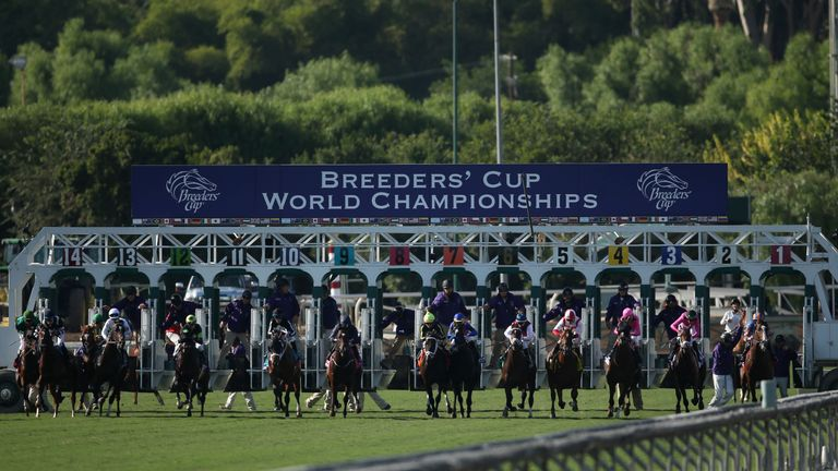 Sky Sports Racing To Show Breeders Cup Racing News