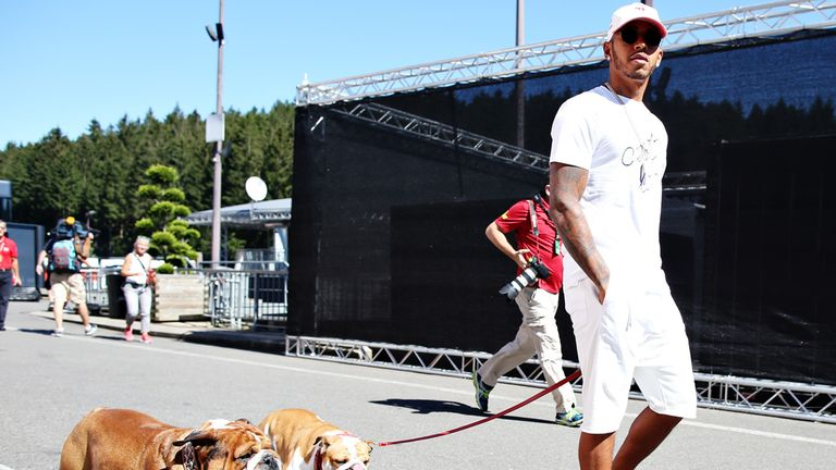 Lewis Hamilton arrives in the paddock with his two dogs, Roscoe and Coco - Picture from Getty Images