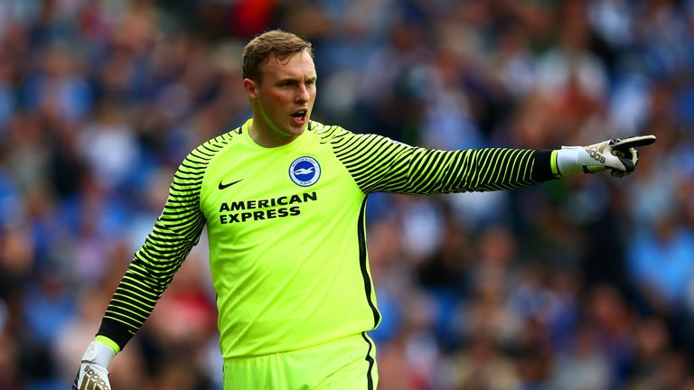 David Stockdale played a key part in Brighton's promotion push