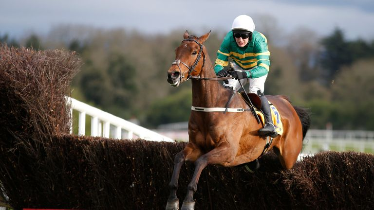 Jody McGarvey riding Great Field to victory at Punchestown