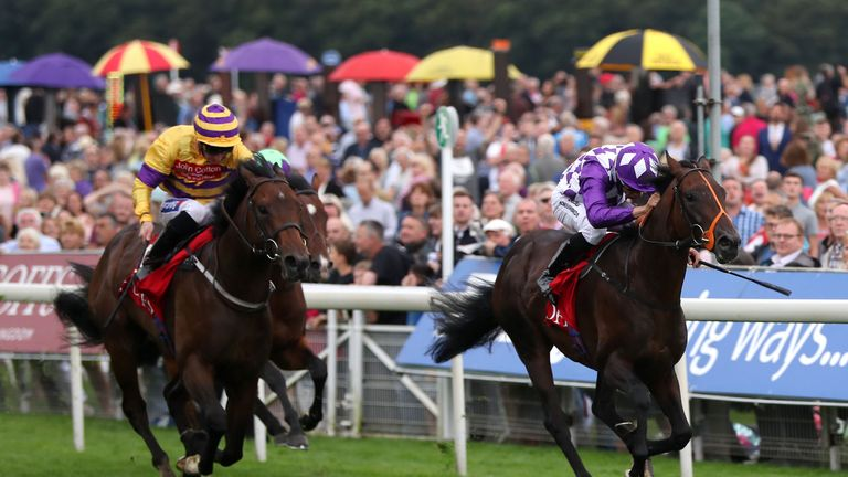 Tangled  (right) wins the Goffs Premier Yearling Stakes