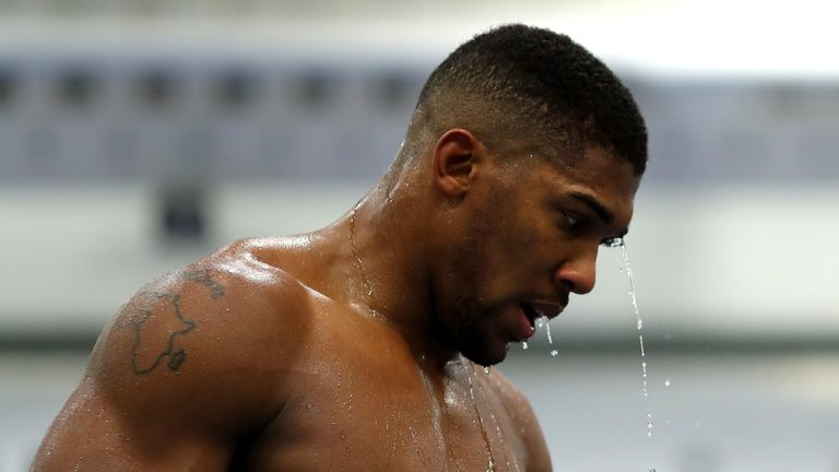 """Joshua says he expects Takam to take him """"10-12 rounds"""" when they fight at the Principality Stadium this weekend"""