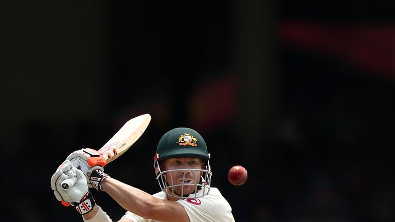 David Warner has established himself as a top-class Test batsman after originally being seen as a T20 specialist