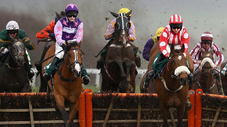Mohaayed wins the County Hurdle at Cheltenham