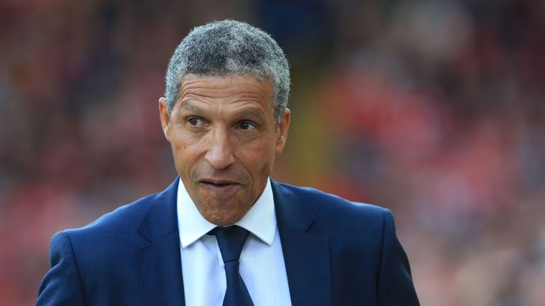 Chris Hughton steered Brighton to the Premier League