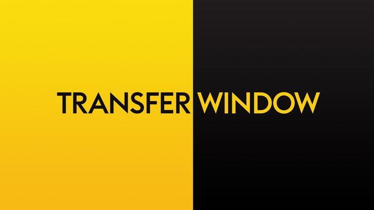 skysports-transfer-window-graphic_4385641.jpg?20180810091733