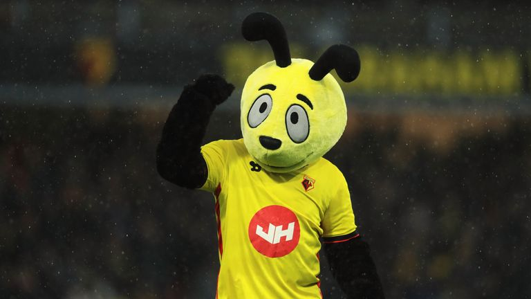 Gareth Evans, the man behind Harry the Hornet, has resigned