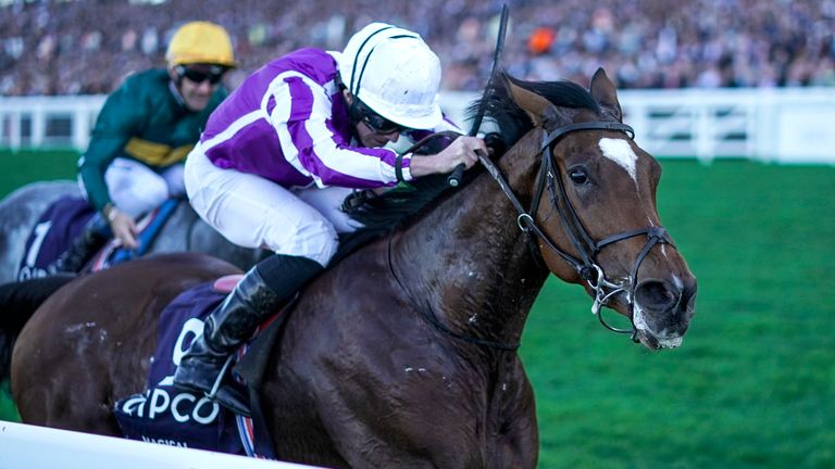 Magical - will run in the Breeders' Cup Turf