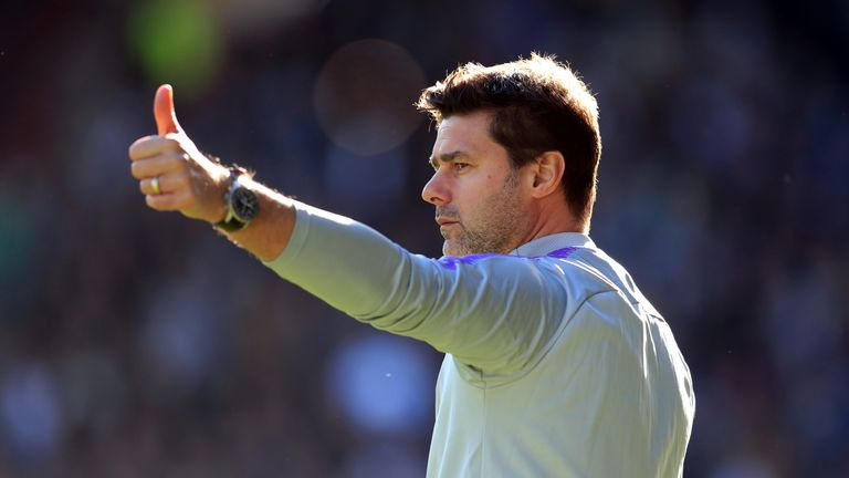 Spurs' Mauricio Pochettino: We're going to try to sign players in January