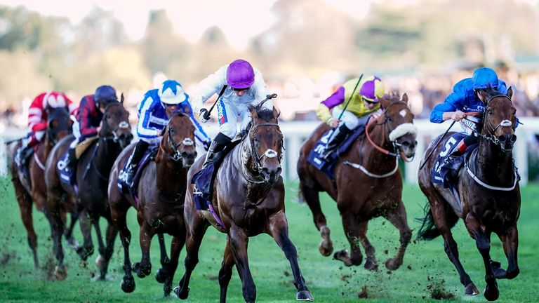 Sands Of Mali - can warm-up for Royal Ascot with victory