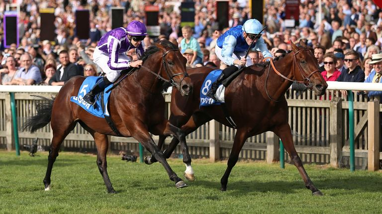 Persian King (right) wins the Autumn Stakes