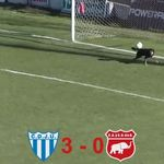Dog makes an incredible goal line in the third tier of Argentina - SkySports