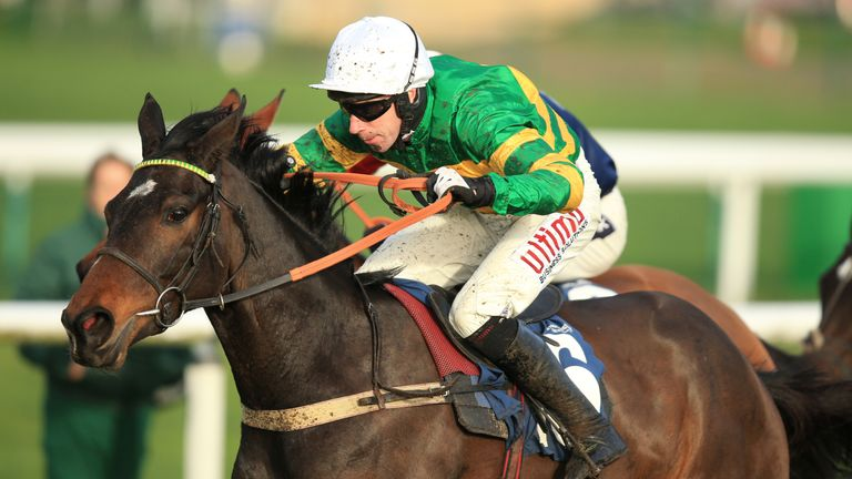 Winter Escape - big race winner at Punchestown