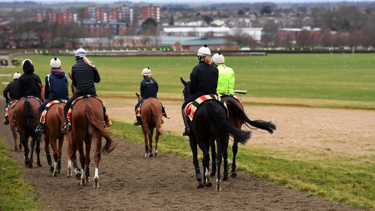 Racing in lockdown as equine influenza tests continue