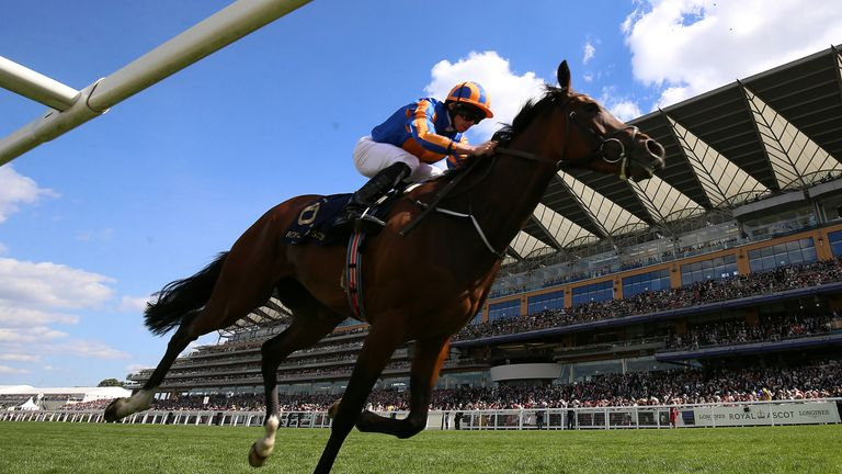 Action from Royal Ascot