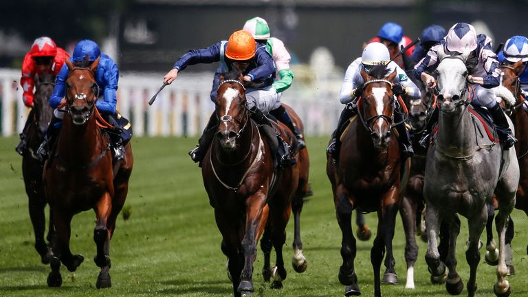 Accidental Agent on course for Ascot