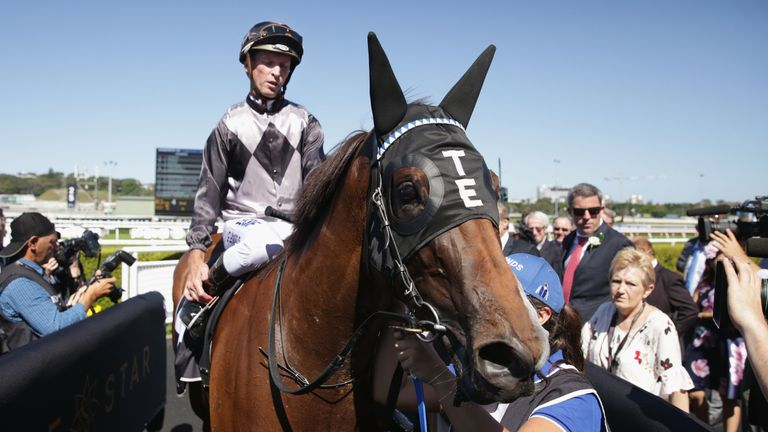 Houtzen - all the right signs ahead of Royal Ascot