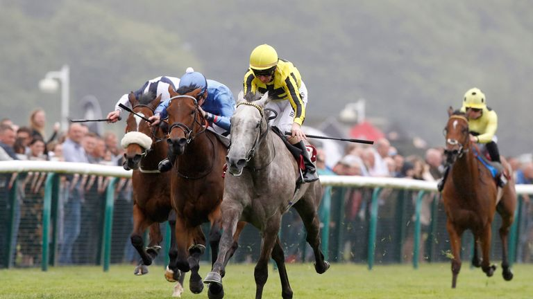 Forever In Dreams under cloud following Sprint Cup
