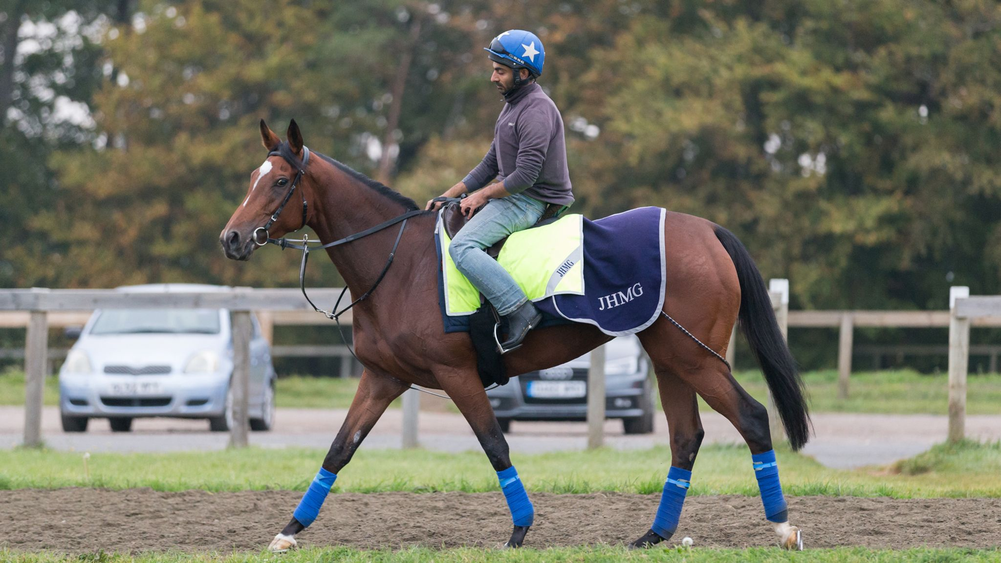 Enable pleases in Newmarket workout ahead of Arc bid