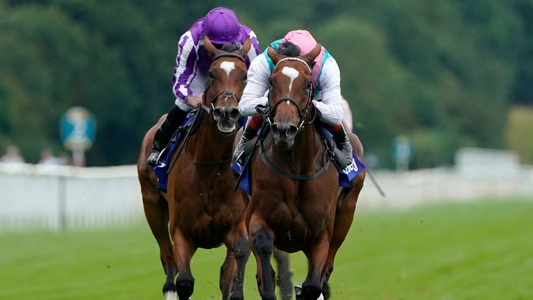 Enable, Magical meet again in Yorkshire Oaks