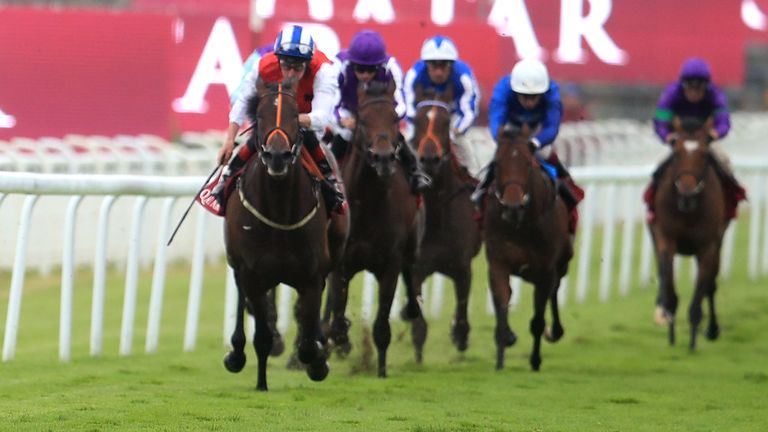 Goodwood faces Sunday check